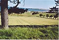 Farmland near Lunan Lodge - geograph.org.uk - 220389.jpg