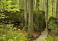 Felsengarten Sanspareil Fels der Liebe und Pansitz 005.JPG