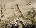 Fenghuang-drawing-1664.jpg