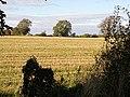 Field to the west of Duntisbourne Leer - geograph.org.uk - 1001701.jpg