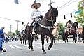 Fiestas Patrias Parade, South Park, Seattle, 2017 - 273 - horses.jpg