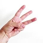Finger = 3 open.JPG
