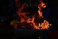 Fire (3187391977).jpg