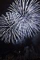 Fireworks - July 4, 2010 (4773762104).jpg