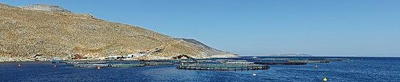 Fish farms near Kalymnos 2.jpg