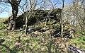 Flächennaturdenkmal bei Zwönitz 2H1A2488WI.jpg