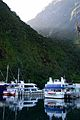 Flickr - JennyHuang - Milford Sound.jpg