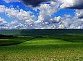 Flickr - Nicholas T - Partly Sunny.jpg