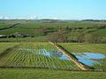 Flooded Fields - geograph.org.uk - 286781.jpg