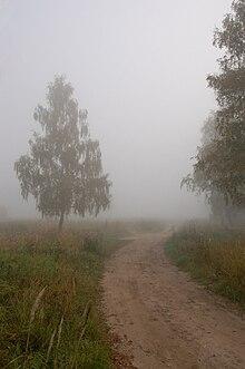 скачать туман через торрент - фото 4