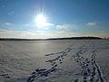Follow the Sun (6830197785).jpg