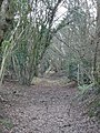 Footpath through woods near Hyde Farm - geograph.org.uk - 303157.jpg