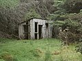 Forlorn Shed, Kindrogan - geograph.org.uk - 1372902.jpg