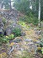 Fornborgen Viksberg 3.jpg