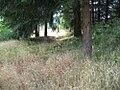 Fort Hoskins 150th - 43.jpg