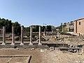 Forum Paix - Rome (IT62) - 2021-08-25 - 4.jpg