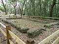 Foundation for Slave Quarters.jpg