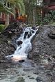 Fountain at Disney's Polynesian Resort (12758992044).jpg