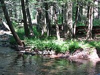 Fowlers Hollow State Park.jpg