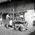 Frščilova preša, Glogovica 1950.jpg