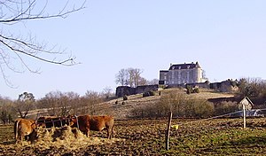 Château de Montréal - View of the chateau from the north