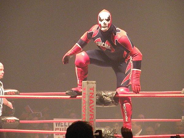 Professional wrestling gimmicks