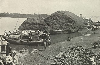 Hooghly River - The Hooghly River from the Harvest Fields of Bengal, c. 1905