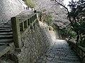Front approach to Kunōzan Tōshō-gū 01.jpg