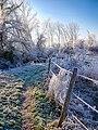 Frost Trail (32224104455).jpg