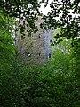 Garth Castle - geograph.org.uk - 187505.jpg