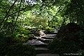 Garvan Woodland Gardens' Japanese Garden.jpg
