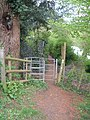 Gate on riverside walk - geograph.org.uk - 412393.jpg