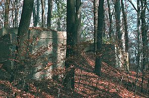 "Gaugefechtsstand Wien - The remnants of the entrance to the gasoline storage facilities of the ""Schirach-Bunker"", shortly before their destruction in 1983"