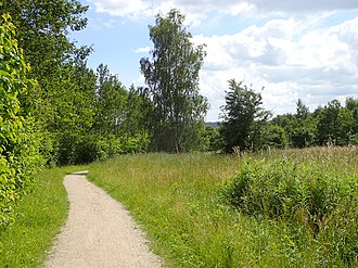 Gellerup - Image: Gellerup Skov (sti)