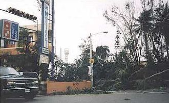 Effects of Hurricane Georges in the Dominican Republic - Toppled trees blocked hundreds of streets in Santo Domingo