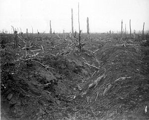 Zone Rouge - A German trench at Delville Wood, near Longueval (Somme), that were destroyed in 1916 in the Red Zone