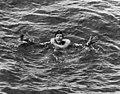 Germansailorinwater.jpg
