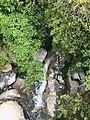 Glasseye Creek Upstream.jpg
