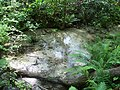 Gold Head Branch SP ravine stream01.jpg