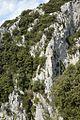 Gorges de Galamus 14.jpg