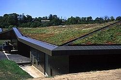 Techo verde plantado con especies nativas en L'Historial de la Vendée, un nuevo museo en Francia.
