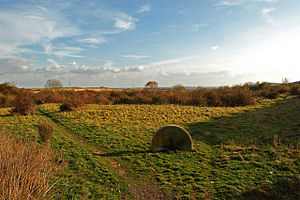 Greetwell, West Lindsey - Greetwell Hollow Nature Reserve