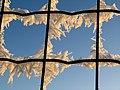 Grid - Flickr - Stiller Beobachter.jpg