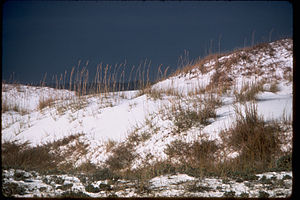 Gulf Islands National Seashore GUIS1791.jpg