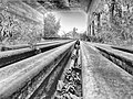 HDR Canvas 07.jpg