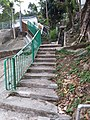 HK 西貢 Sai Kung District hiking Ma On Shan Country Park Pak Sha Wan Sam Sing Wan Pak Ma Tsui February 2021 SSG 41.jpg