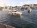 HK TST 尖沙咀 Tsim Sha Tsui 梳士巴利花園 Salisbury Garden public piers 維多利亞港 Victoria Harbour 黃昏 evening June 2020 SS2 13.jpg