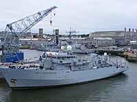 HMS Roebuck (H130).jpg