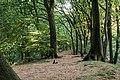 Haltern am See, Westruper Heide -- 2016 -- 2547.jpg