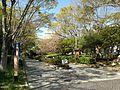 Hamamatsu park.JPG